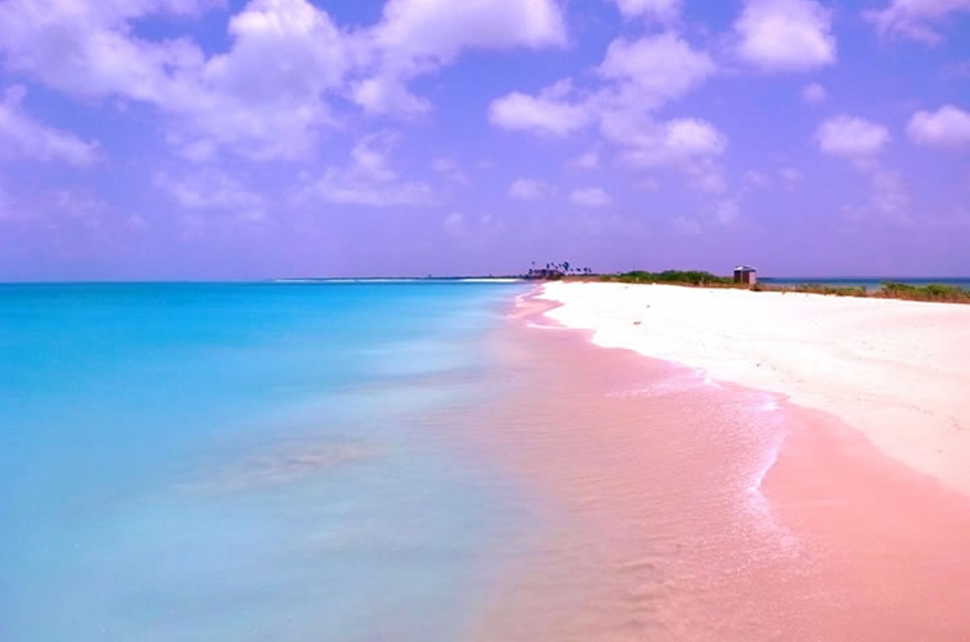 Harbour Island Bahamas Pink Sands Beach